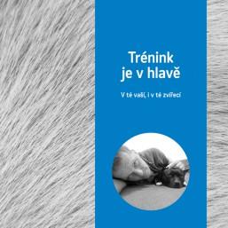 Kniha - Trénink je v hlavě, v té vaší i v té zvířecí